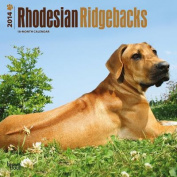 Rhodesian Ridgebacks 2014 Wall Calendar