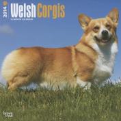Welsh Corgis 2014 Wall Calendar