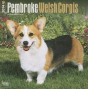 Pembroke Welsh Corgis 2014 Wall Calendar