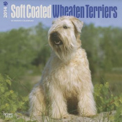 Soft Coated Wheaten Terriers 2014 Wall Calendar
