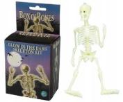 BOX O'BONES GLOW IN THE DARK SKELETON KIT