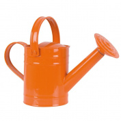 Twigz Watering Can (Orange)