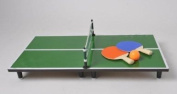 Deluxe Mini Desk Top Table Tennis Table