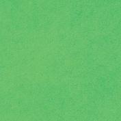 """Stick It Felt 23cm X12""""-Neon Lime"""