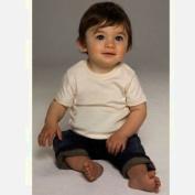 Babybugz Organic Baby T-Shirt / Baby And Toddlerwear (6-12)