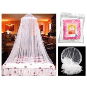 DOME BED KING CANOPY NETTING INSECT FLY MOSQUITO NET WHITE