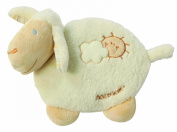 Fehn Baby Love Hot and Cold Compress with Sheep Cover