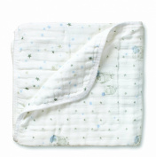 Aden and Anais Night Sky Hibou and Starburst Dream Blanket