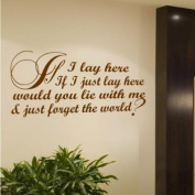 Sticker Bay Snow Patrol Lyrics If I Lay Here Wall Quote Sticker Song Art - White
