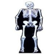 Skeleton Cutout Life Size Standee