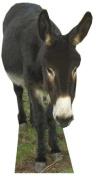 Donkey - Wildlife/Animal Lifesize Cardboard Cutout / Standee / Standup