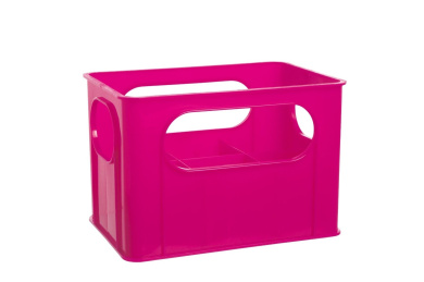 dBb Remond 177158 Crate for 6 Feeding Bottles Translucent Pink