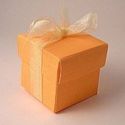 Little Cupcake Boxes Company Square Orange Silk Mini Cupcake Boxes - 50mm - pack of 10