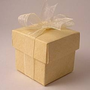 Little Cupcake Boxes Company Square Sand Silk Mini Cupcake Boxes - 50mm - pack of 10