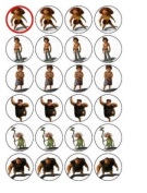 24 Croods Cupcake Toppers