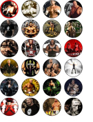 WWE SUPERSTARS 24 EDIBLE WAFER - RICE PAPER CAKE TOPPERS EACH DESIGN IS 40mm IN DIAMETER
