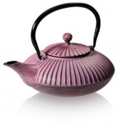 Nanjing Cast iron tea pot with stainless steel infuser