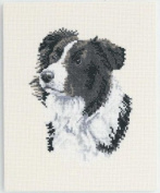 DMC Cross Stitch Kit The Border Collie