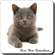 "Blue Cat ""Love You Grandma..."" Single Leather Coaster Christmas Present Gift For Nan"
