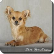 "Brown Chihuahua Dog ""Love You Mum..."" Mothers Day Sentiment Single Leather Coaster Gift"