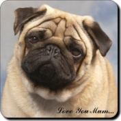 "Fawn Pug Dog ""Love You Mum..."" Mothers Day Sentiment Single Leather Coaster Gift"