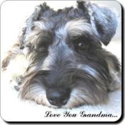 "Schnauzer Dog ""Love You Grandma..."" Grandparents Day Sentiment Single Leather Coaster Gift"