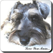 "Schnauzer Dog ""Love You Mum..."" Mothers Day Sentiment Single Leather Coaster Gift"