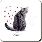 Silver Tabby Cat - Nan Sentiment Leather Coaster Christmas Gift, Ref:AC-142SC