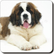 St Bernard Dog Leather Coaster Christmas Gift, Ref:AD-SBE5SC