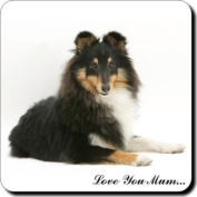 "Tri-Colour Shetland Sheepdog ""Love You Mum..."" Mothers Day Sentiment Single Leather Coaster Gift"