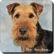 """Welsh Terrier Dog """"Love You Mum..."""" Mothers Day Sentiment Single Leather Coaster Gift"""