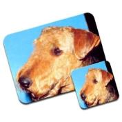 Airedale Terrier Dog Premium Mousematt & Coaster Set