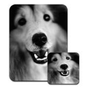 Border Collie Dog Close Up Black & White Premium Mousematt & Coaster Set