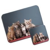 Kittens Cat Premium Mousematt & Coaster Set