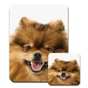 Pomeranian Dog Close Up Premium Mousematt & Coaster Set