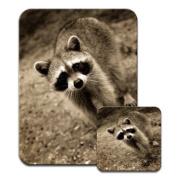 Raccoon Racoon Premium Mousematt & Coaster Set