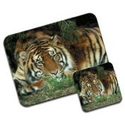 Tiger Premium Mousematt & Coaster Set