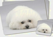 Bichon Frise Dog Twin Coaster and Placemat Set, Ref:AD-BF1PC