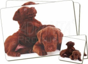 Chocolate Labrador Puppies Twin Coaster and Placemat Set, Ref:AD-L81PC