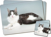 Maine Coon Cat Twin Coaster and Placemat Set, Ref:AC-36PC