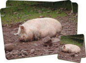 Sleeping Pig Print Twin Coaster and Placemat Set, Ref:AP-5PC