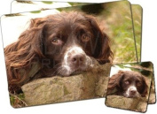 Springer Spaniel Dog Twin Coaster and Placemat Set, Ref:AD-SS1PC