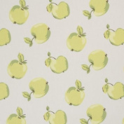 Pomme Green Oilcloth Wipe Clean Tablecloth 2 Metres