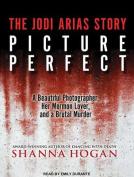 Picture Perfect [Audio]