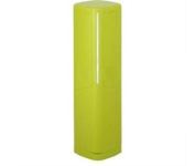 Toilet Brush with Case - Green