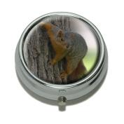 Squirrel Pill Case Trinket Gift Box