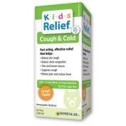 Homeolab Usa, Kids Cough & Cold -- 8.5 Fl Z