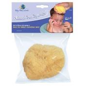 Baby Bath Natural Sea Sponge