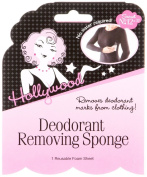 Hollywood Deodorant Removing Sponge 1 Reusable Foam Sheet