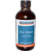 Ethical Nutrients Zinc Status, 120 Ml